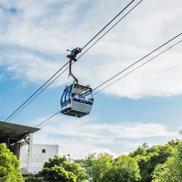 np360 cable car experience